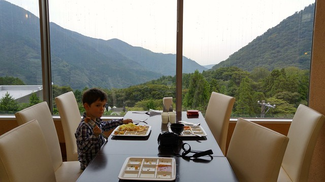 Lunch with a view, Hakone Open Air Museum