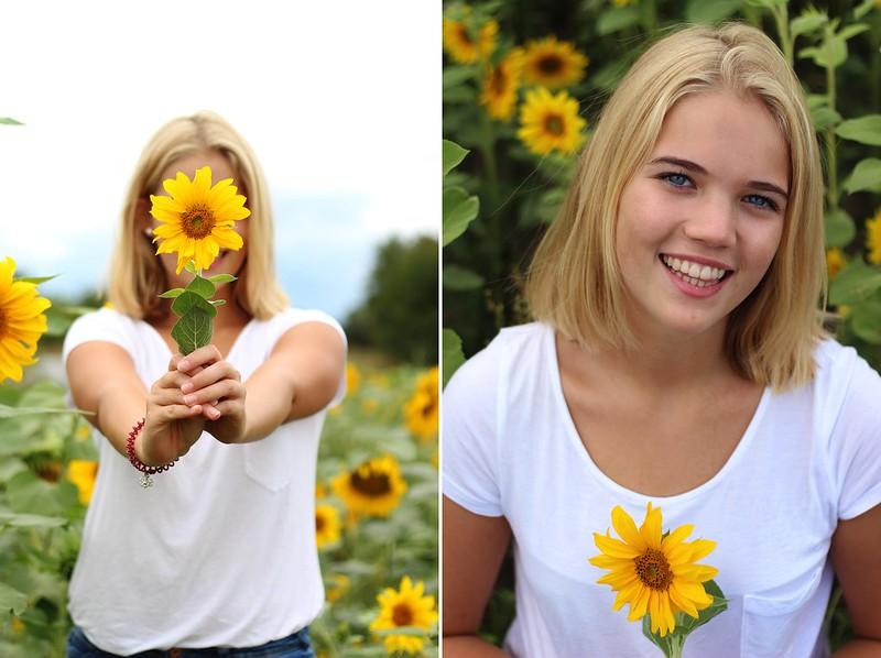 Sonneblumenfeld Alisha September 2015 033gimp-tile