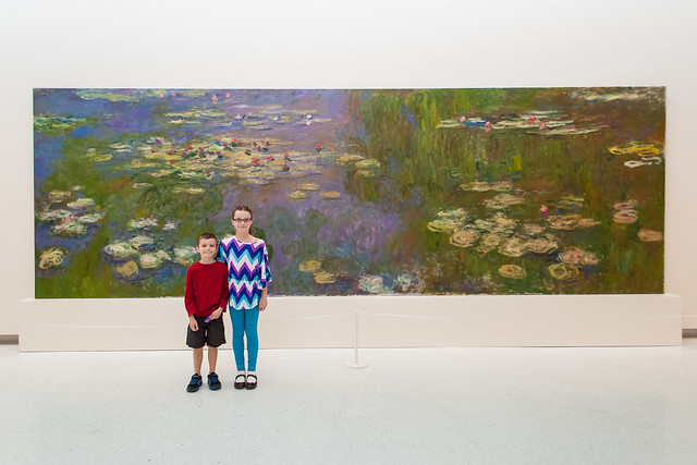 Monet's Water Lilies (Nymphéas)
