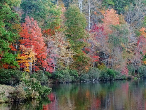 statepark fall landscape virginia