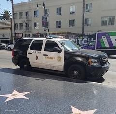 Los Angeles County CA Sheriff - Chevrolet Tahoe - K-9 unit (40)