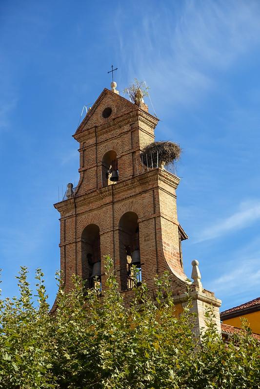 Gillians Camino Pics-8