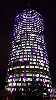 Tower of Violet Lights (20161215_173055 1PS)