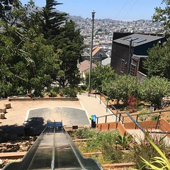 Esmeralda slides - of course i partook - they even have cardboard to make it faster! #bernalheights #bernalwood