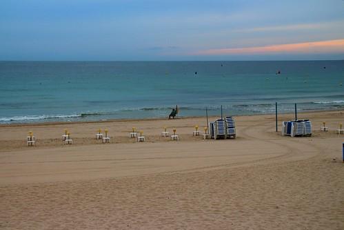 Madrugadores de Playa. Paseo desde Mil Palmeras a Dehesa de Campoamor