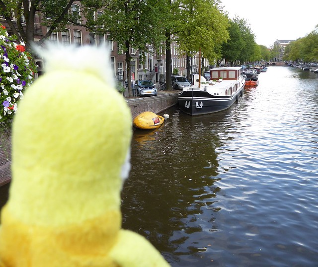 Swami liked the yellow boat