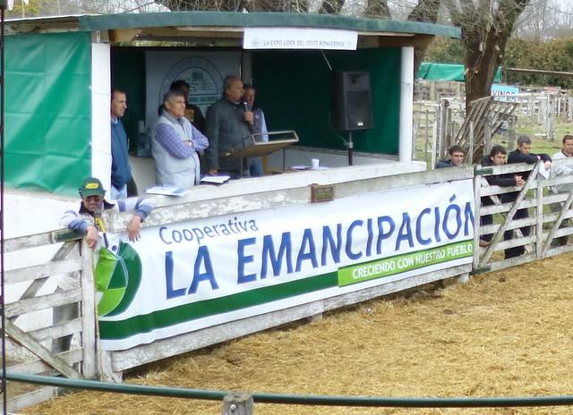 Expo Rural Salliquelo 2015