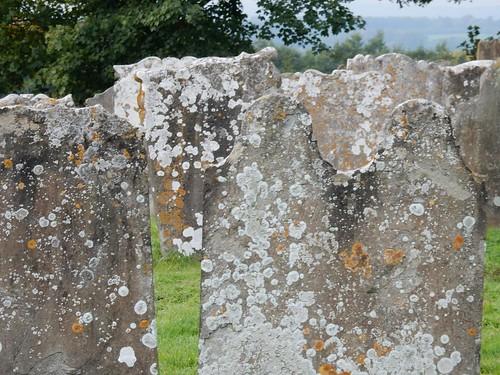 Churchyard St Michael's Roydon
