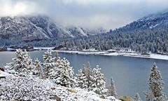 Clearing Up, Tioga Lake, Yosemite 5-15