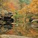Johnnies Creek, Johnnies Creek Canyon, Lookout Mountain, Cherokee County, Alabama 1 by Alan Cressler