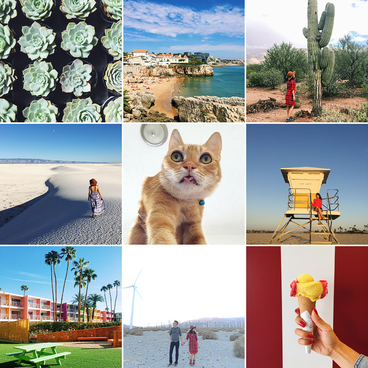Last Month's Highlights on Instagram.
