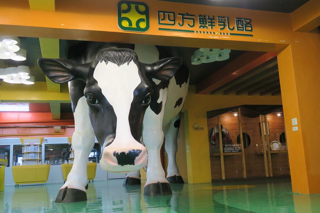 苗栗縣竹南鎮四方鮮奶牧場乳酪故事館 (11)