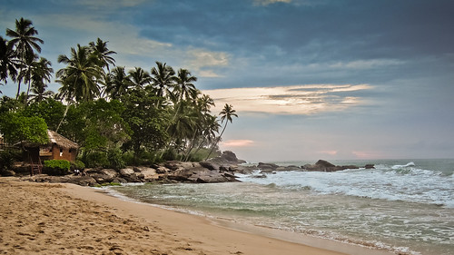 asia azië ceylon serendib srilanka tangallef tangalle southernprovince beach strand palmtree palm palmboom boom tropical tropisch sandybeach zandstrand ocean sea coast shore kust zee sunset zonsondergang chantalnederstigt channedimages