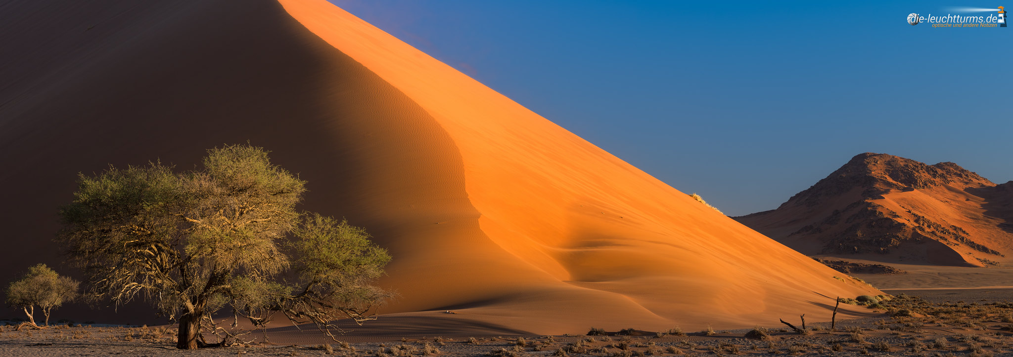 Glowing Dune
