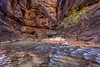 Cascades in the Narrows of Zion