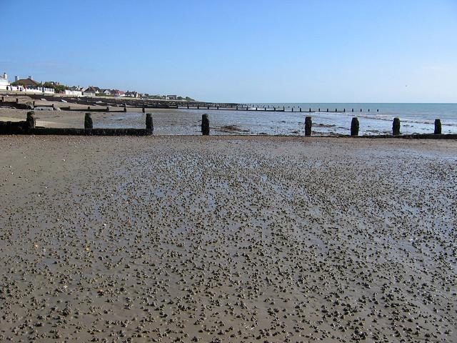 The coast at Felpham
