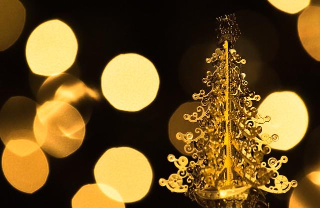Christmas Trees-EXPLORED