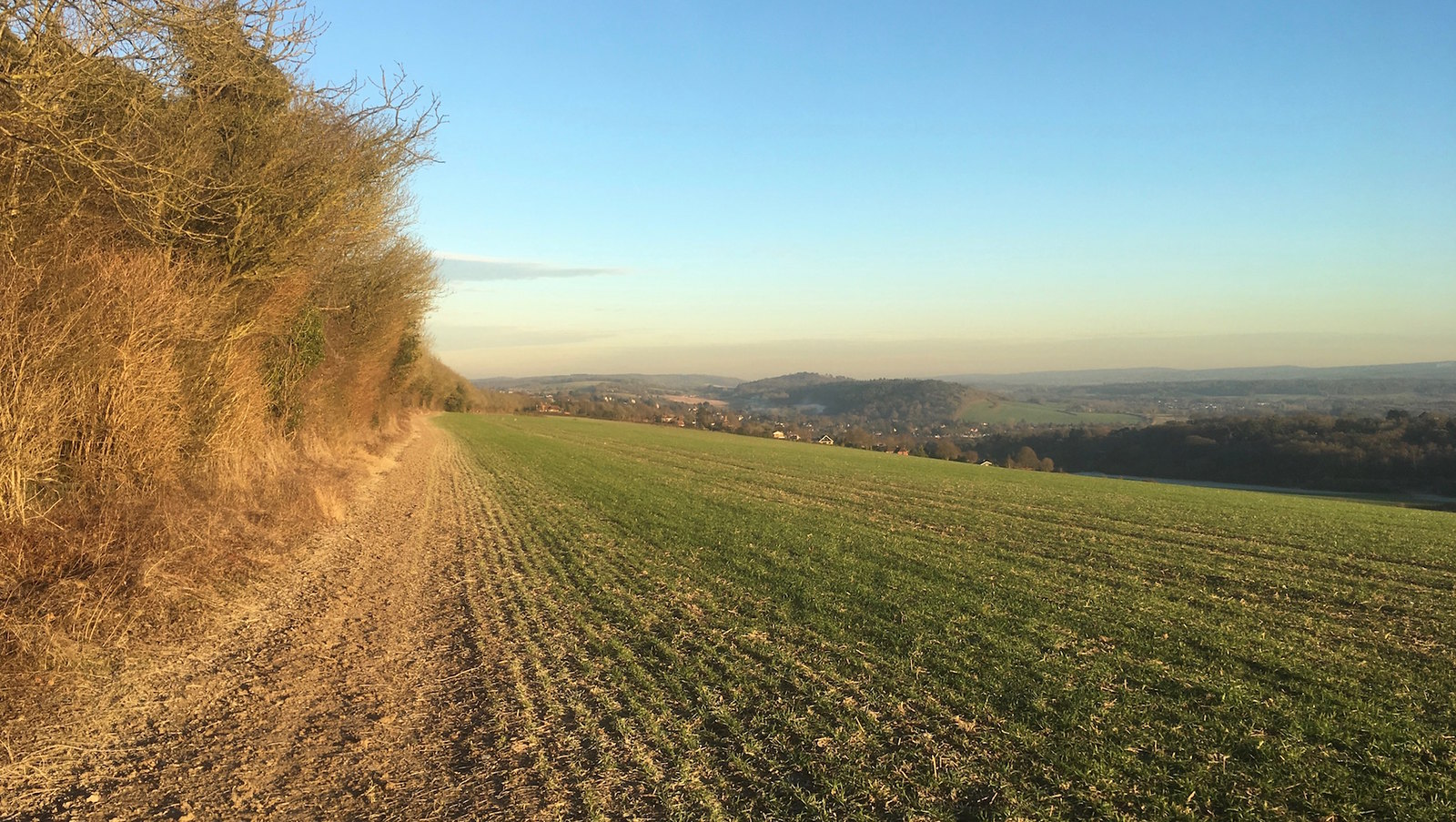 View from the Hog's Back start Guildford to Farnham walk