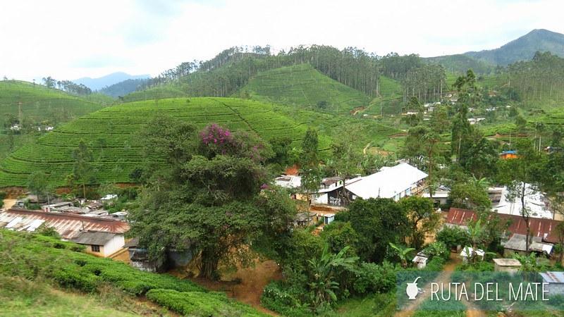 Haputale Sri Lanka (3)