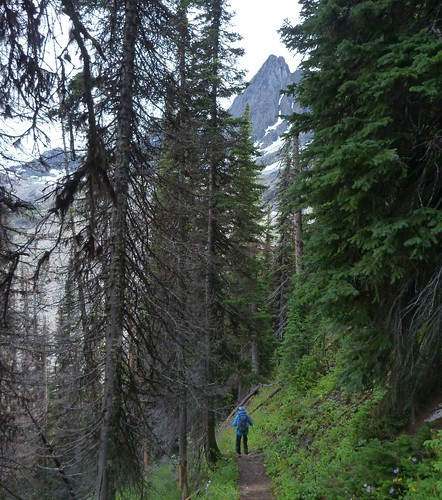 Floe Lake Trail