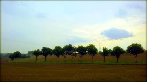 unknown treesure it is then