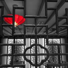 Looking through. #Red #lantern. #Patterns and #lines. Captured on an #iphone5S and selectively coloured in #ColorSplash app.
