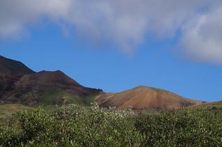 065 Uitzicht Denali NP