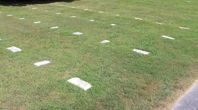 Western Front Poplar Grove National Cemetery, Petersburg, VA 15