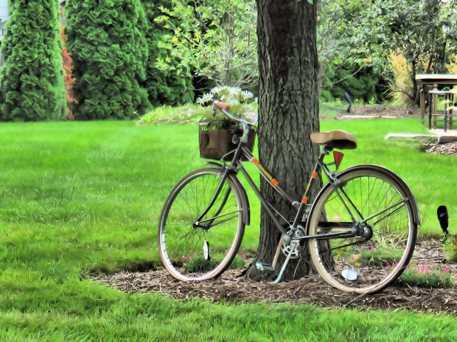 Bicycle HDR 20150831