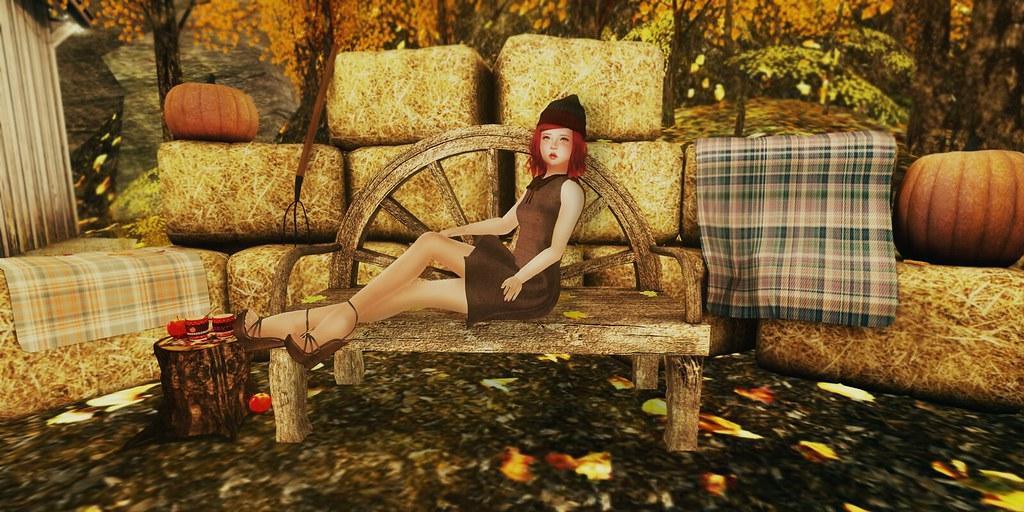 My Cozy Autumn