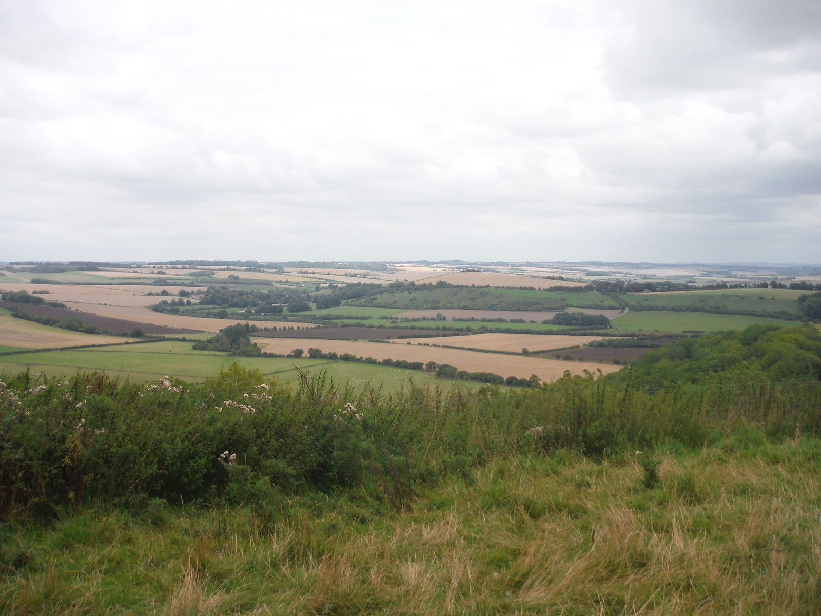 The Chalke Valley, from Elcombe Down `SWC Walk 250 Tisbury Circular via Alvediston