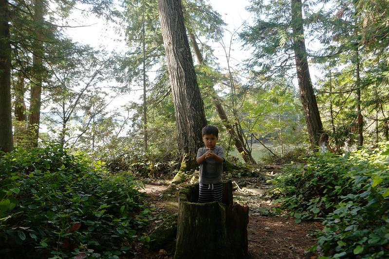 Blog Washington Bellingham
