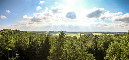 panorama nature forest view hill lithuania žemaitija samogitia