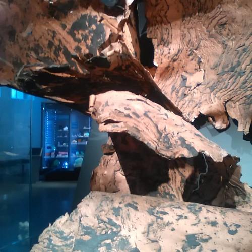 Native copper #toronto #royalontariomuseum #copper #nativecopper #rom #michigan