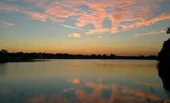 Evening jog at Woodlawn Lake