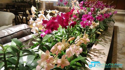 Shangri-La Bangkok Lobby orchids