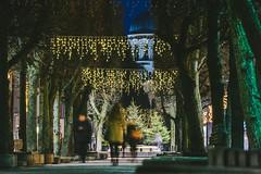Xmas Decorations   Kaunas #329/365