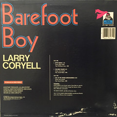LARRY CORYELL:BAREFOOT BOY(JACKET B)