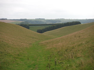 Backview down Church Bottom, Prescombe Down NNR (II)