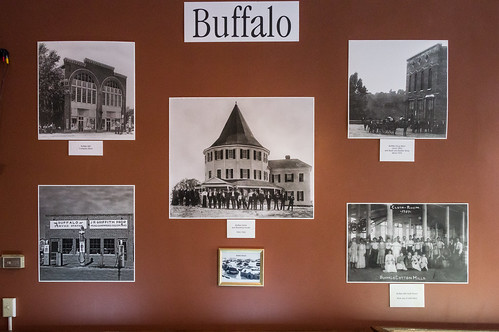 Buffalo photos