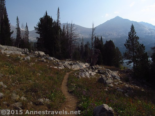 After a first glimpse of the lake, the trail winds through another few stands of trees before coming out into open views across Big Sandy Lake, Wind River Range, Wyoming
