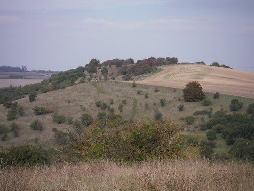 Galley Hill, from Warden Hill