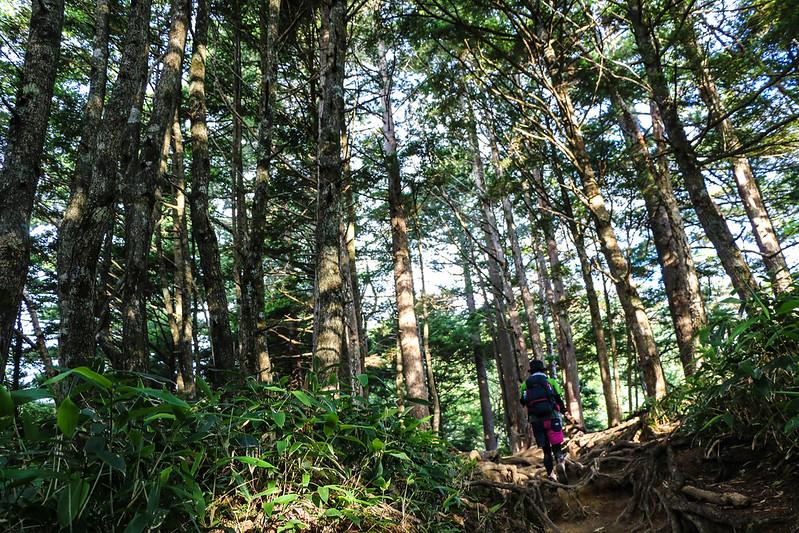 2014-08-02_00090_燕岳.jpg