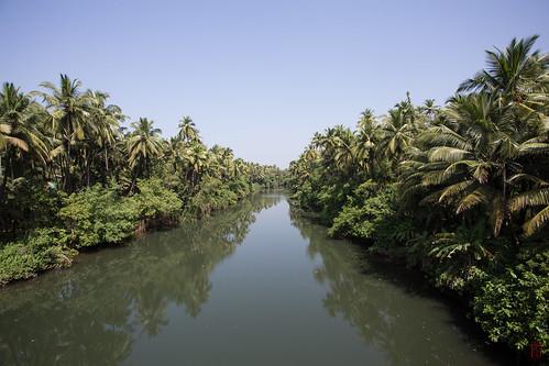 voyage travel india river goa rivière jungle inde worldtour tourdumonde