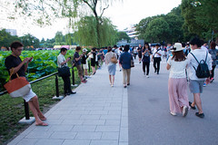 Pokémon Go Trainers at Shinobazu Pond in Ueno Park