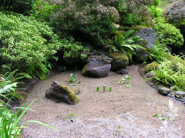 New shallow pond flickr photo sharing for Shallow garden pond
