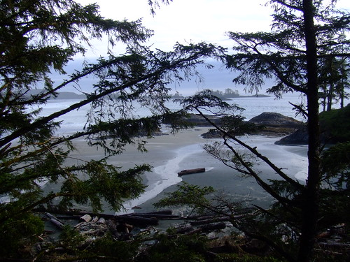 Chesterman Beach, Tofino - March 07
