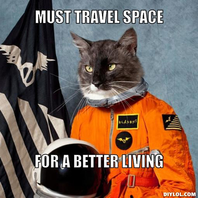 serious-space-cat-meme-must-travel-space-for-a-better-living-60135b