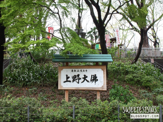 japan tokyo trip ueno park 8