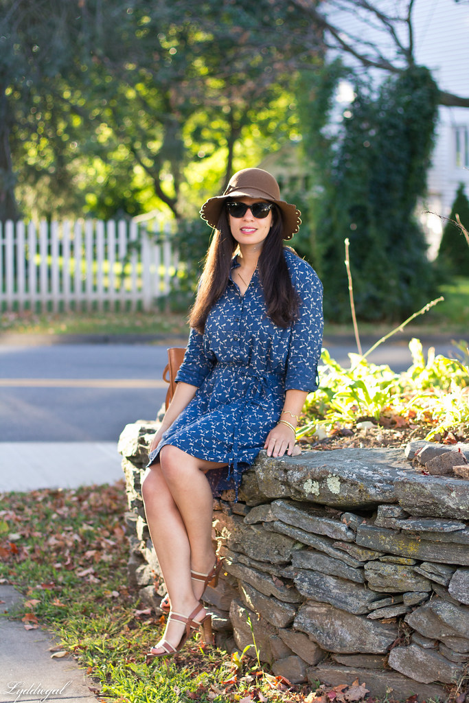 dragonfly print shirt dress, brown tote, scalloped brim hat-8.jpg